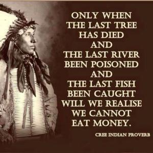cree proverb